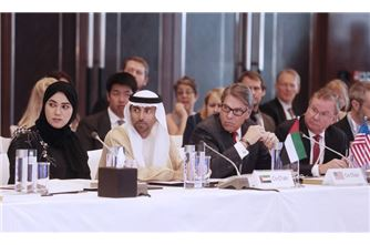 UAE companies boast very good presence in US, producing petrochemicals, creating jobs: Minister of Energy